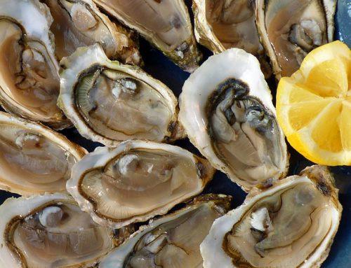 Come intraprendere nel business delle ostriche